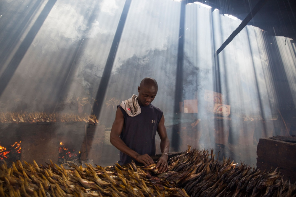 Behind Gambia's largest fish market at Tanji is a collection of fish smoking buildings. For centuries fish have been smoked here and either sold domestically or exported to other parts of North Africa, particularly Nigeria. Caught in the Atlantic, the fish are smoked for days after which they can be kept without refrigeration for months. Tanji, The Gambia