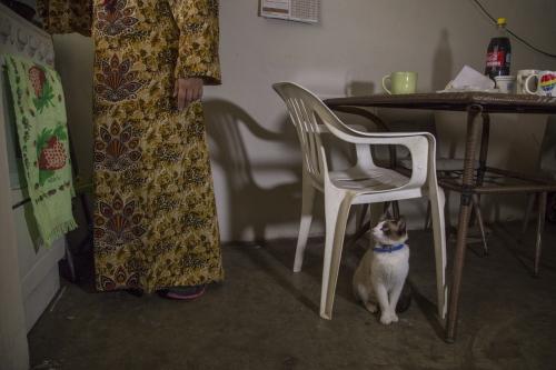 Fatima Castañeda cooks chilaquiles in her apartment in Rosarito, Mexico.
