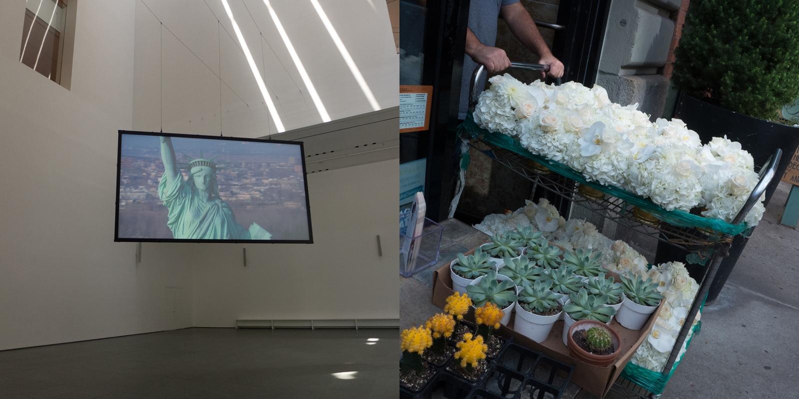 Art and Documentary Photography - Loading moma_statelib-flowers_for_website.jpg