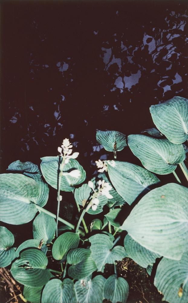 Art and Documentary Photography - Loading Tiergarten_015.jpg