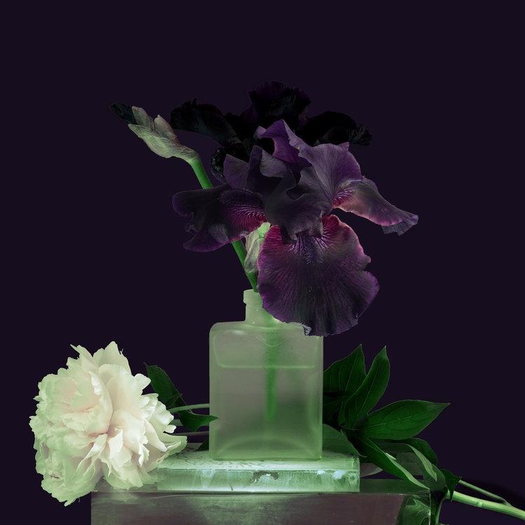 Art and Documentary Photography - Loading Flower-Purple-Iris-with-White-Peoni-2017-.jpg