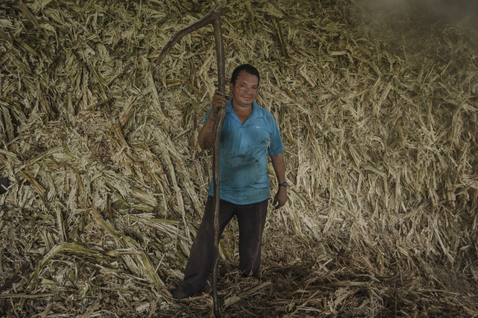 Jorge Manuel with his imposing sickle must submit to the infernal heat of the mill´s ovens for hours, using the sugar cane´s leftovers as a fuel for the machines, here nothing is wasted. (2016)