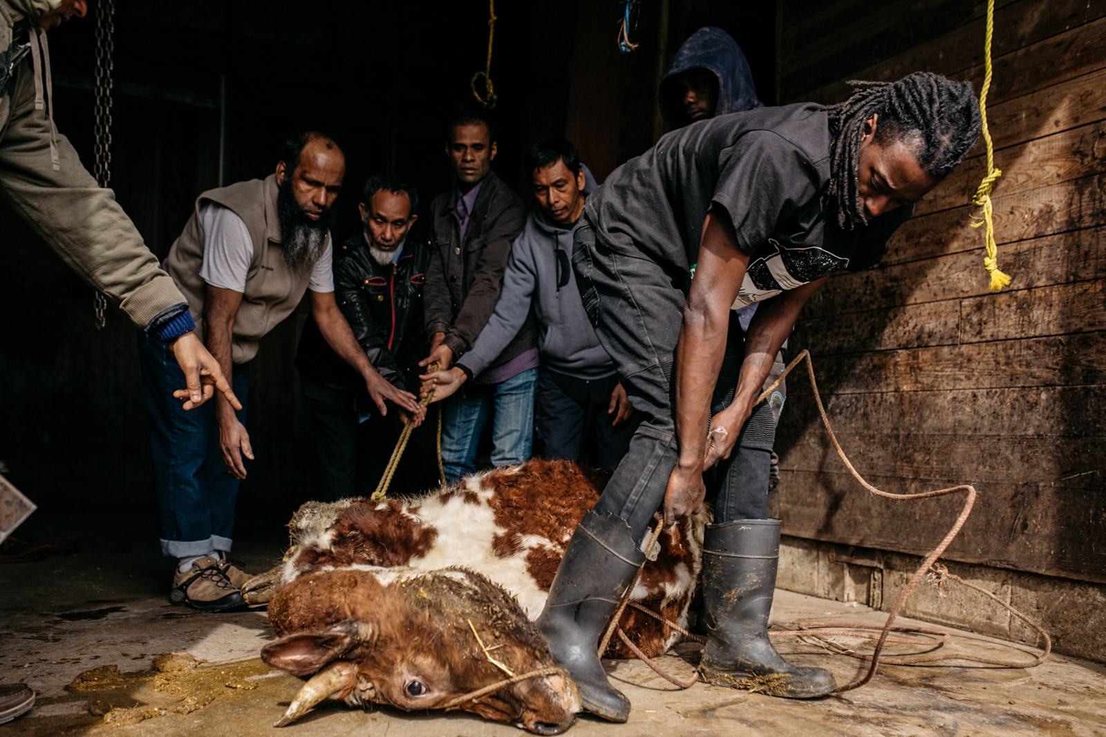 Art and Documentary Photography - Loading rohingya-lapetina-11.jpg