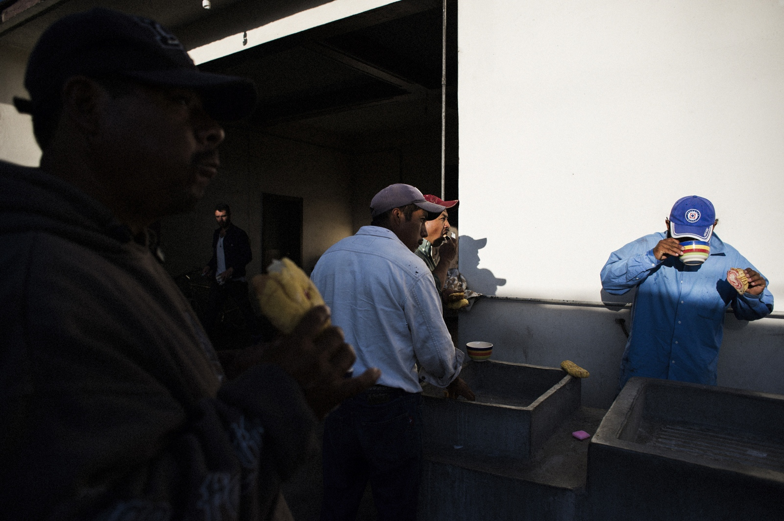 Workers fill up on pan dulce and hot cocoa before heading into the field to harvest agave.