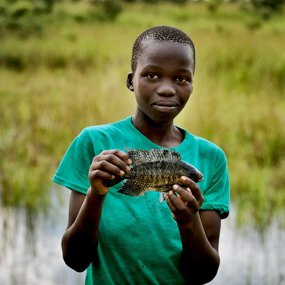 Fish, Gulu roadside