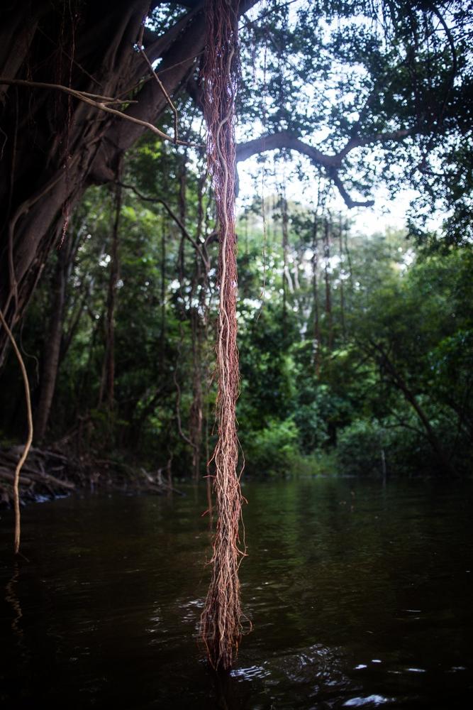 Art and Documentary Photography - Loading Amazon_women04.jpg