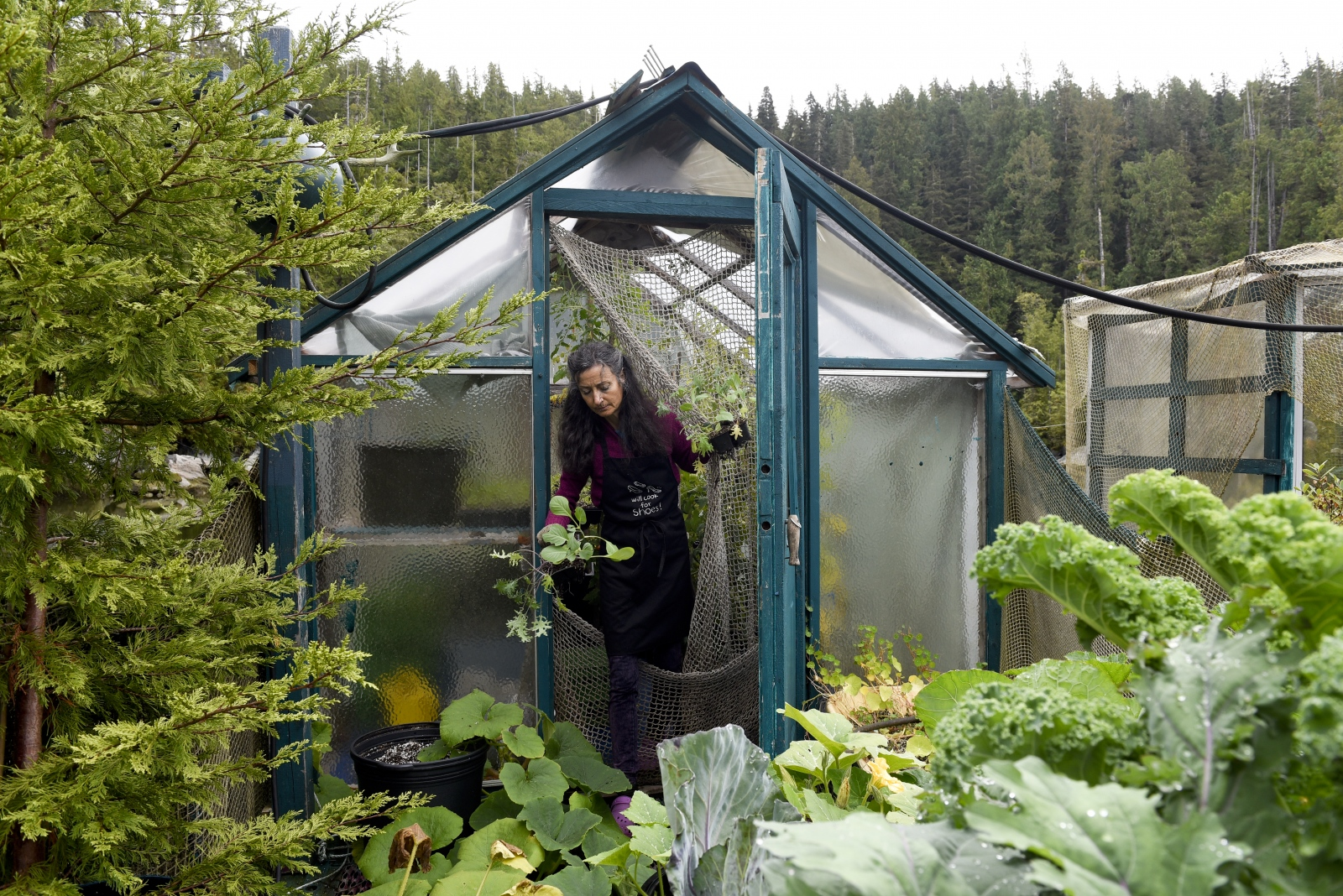 "Catherine King works on her garden. King manages a garden with four greenhouses and countless containers of fresh produce for food. ""The decision to come out was because we love nature so much, and are inspired by it in our work,"" King said. ""I wanted to grow my own food so that I knew where it came from."""