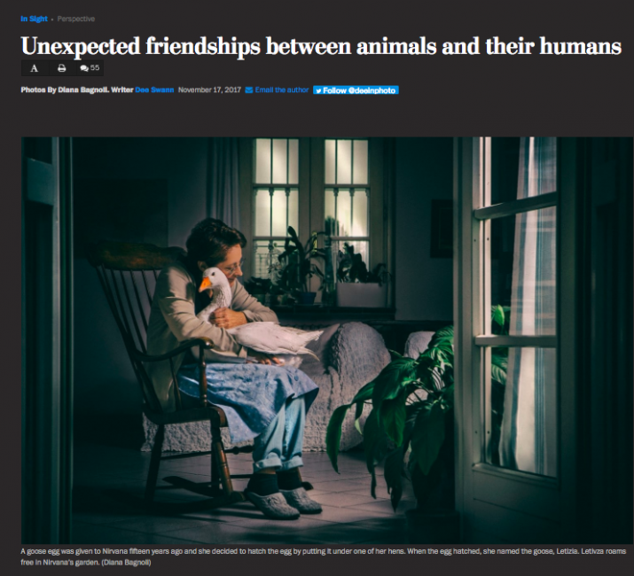 Click here to view the article on The Washington Post