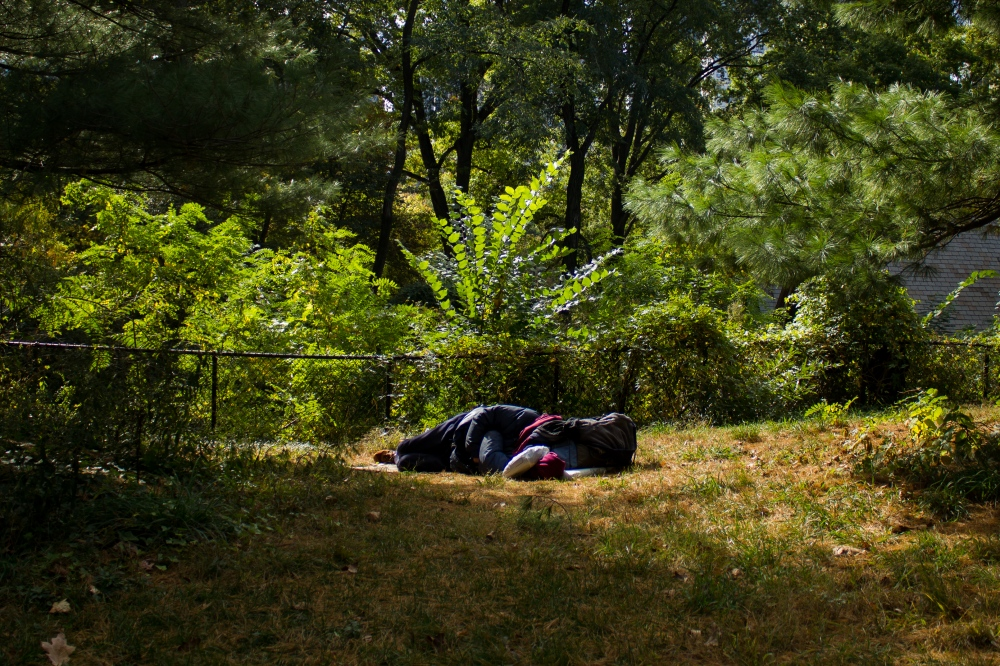 A person takes refuge on one of the many lawns inside Central Park. October 25, 2016.