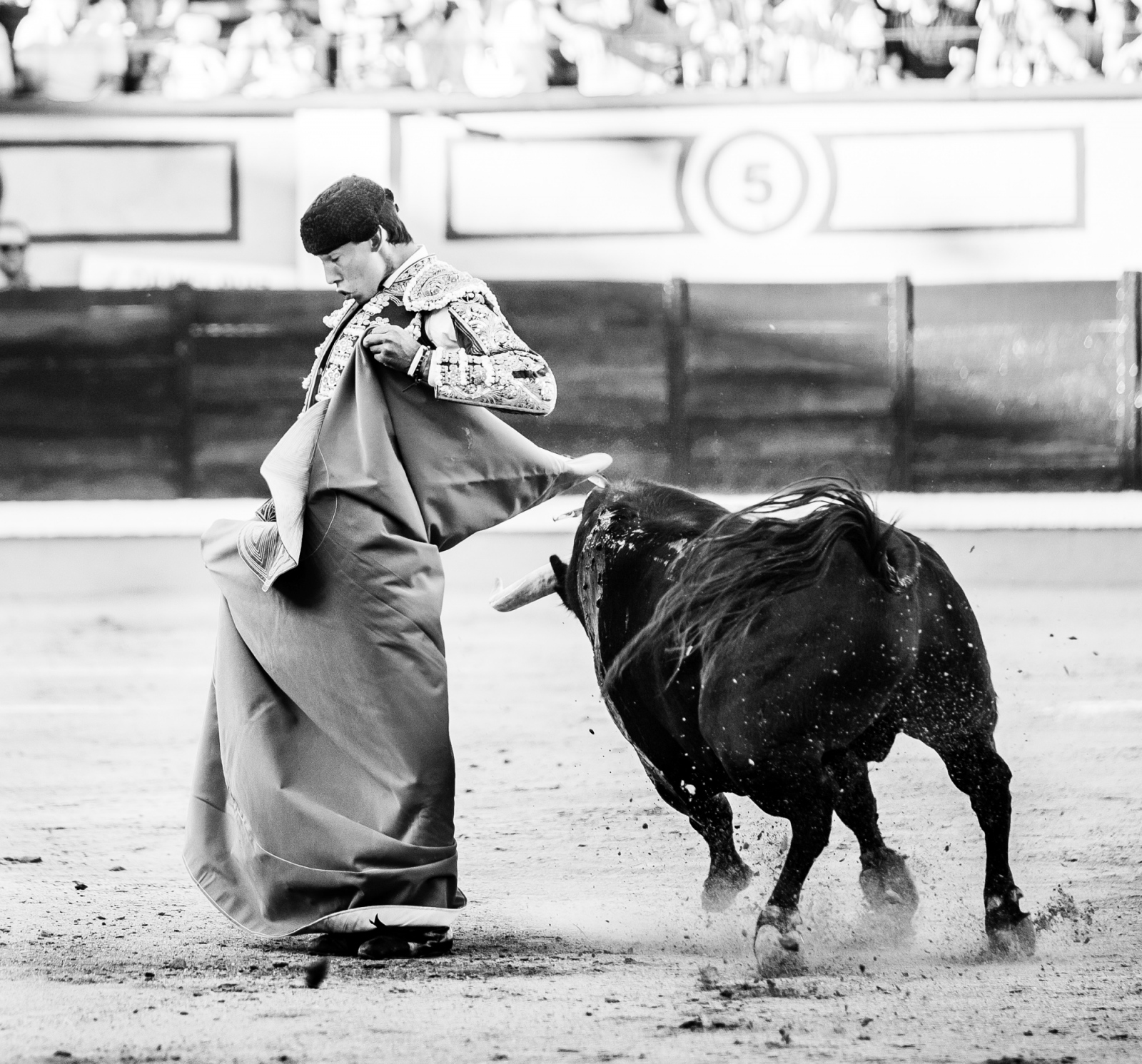 Art and Documentary Photography - Loading Oto_Bullfight_07.jpg
