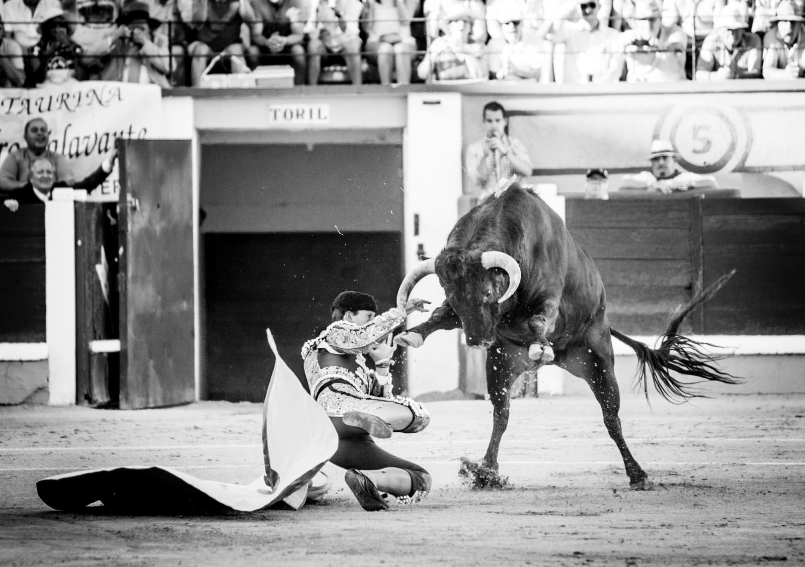 Art and Documentary Photography - Loading Oto_Bullfight_06.jpg
