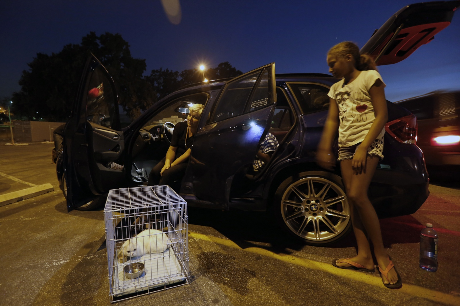 The Kellum family waits for a local veterinarian to house their animals outside of Hart High School in Newhall on Saturday, July 23, 2016. The Kellum family leases a home on Sand Canyon and was evacuated Saturday afternoon. Their animals were boarded with a local veterinarian, and they stayed at the shelter. Katharine Lotze/The Signal
