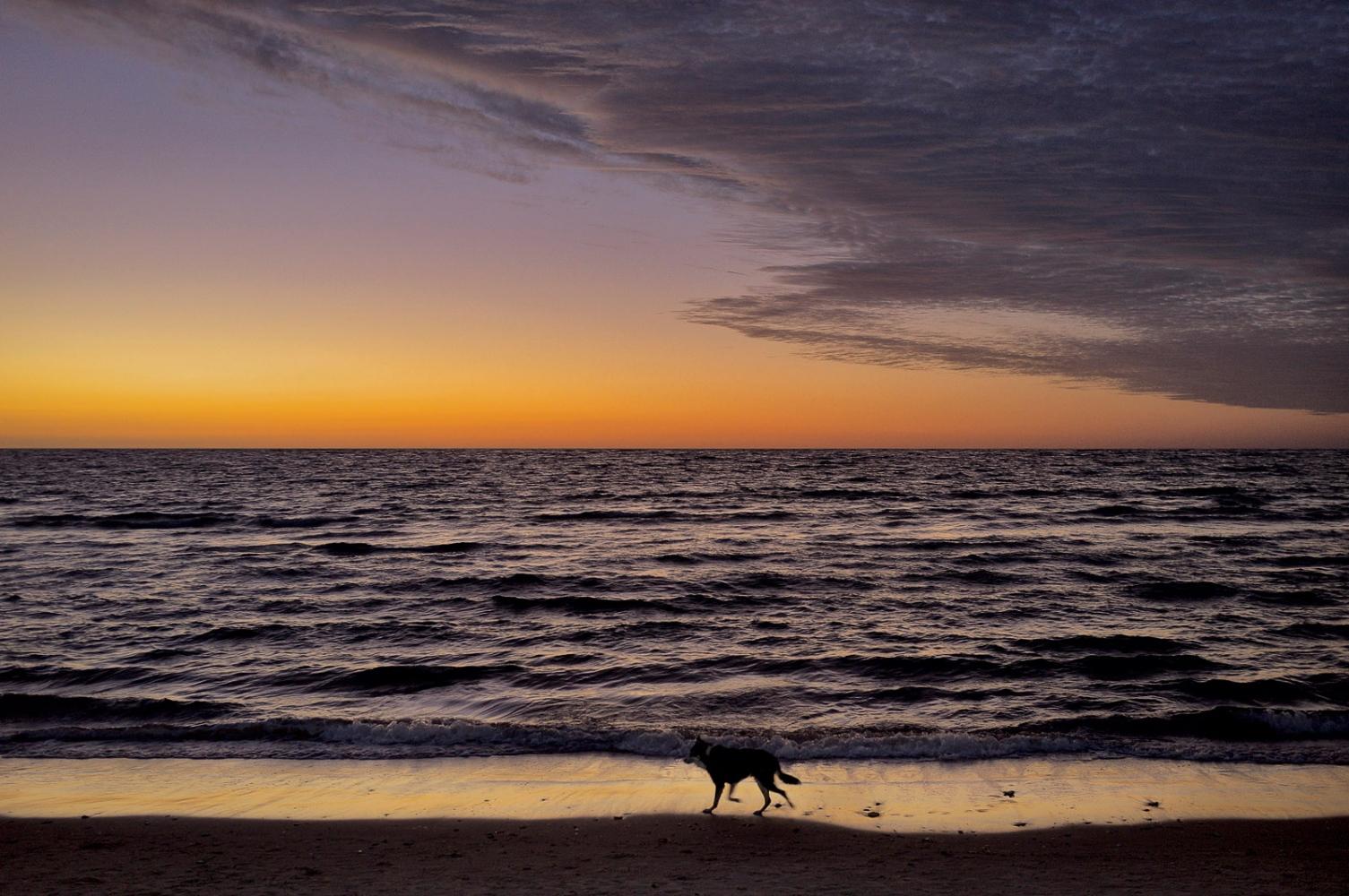 Brighton, South Australia