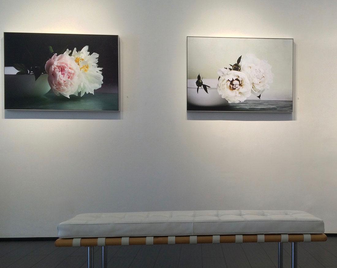 Art and Documentary Photography - Loading kenise-show.jpg