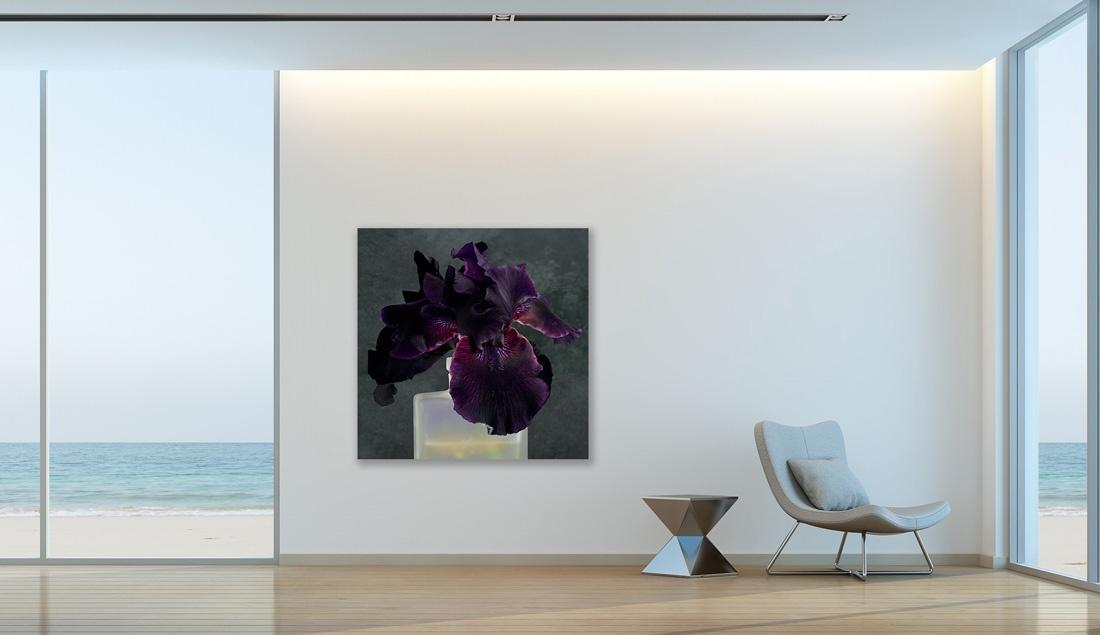 Art and Documentary Photography - Loading purplr-iris-2.jpg