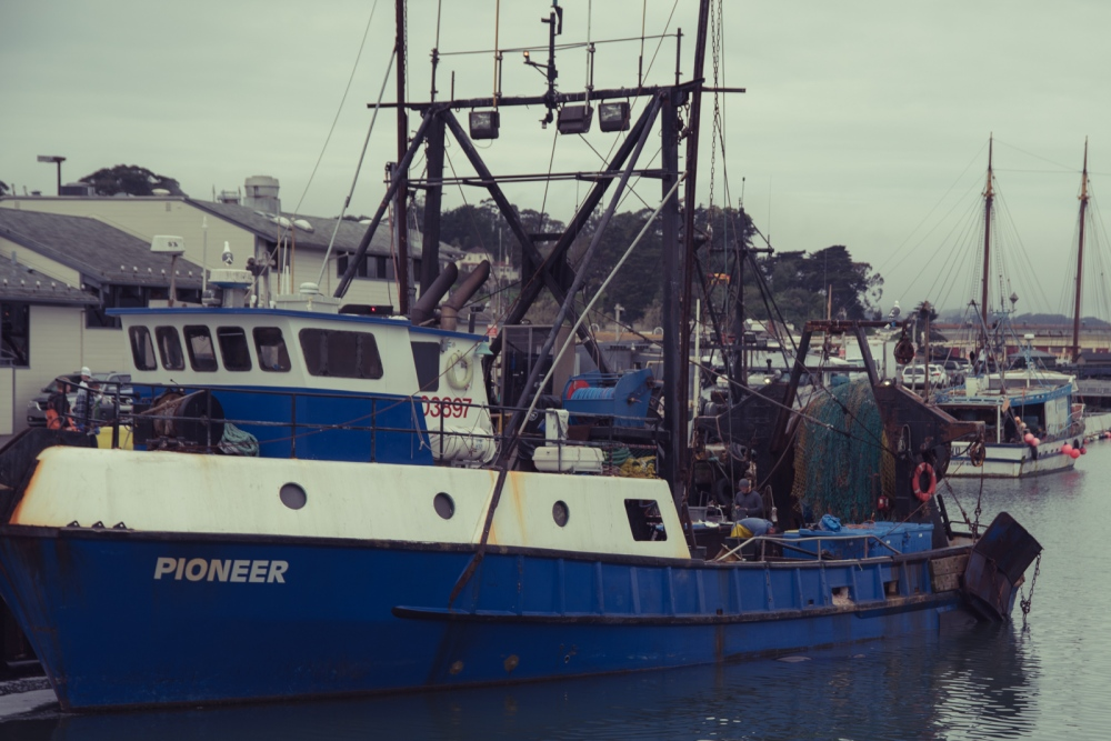 Photography image - Loading _davidtau_Pioneer_Sea_Food_San_Francisco_Ca_-0449.jpg