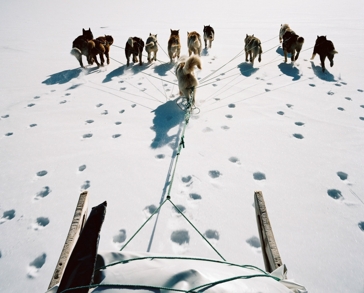 Art and Documentary Photography - Loading 004_Melting_away-.jpg