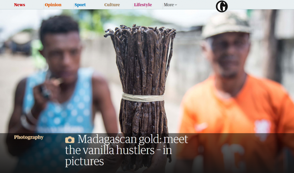 Photography image - Loading FireShot_Capture_011_-_Madagascan_gold__meet_the_vanilla_hus__-_https___www.theguardian.com_artand.png