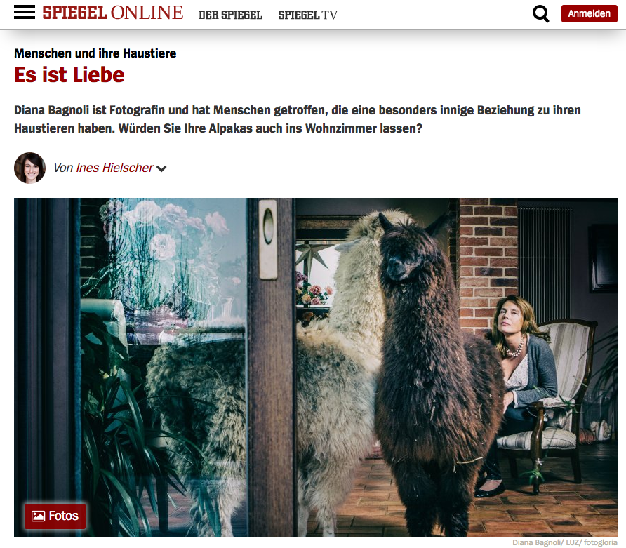 Click here to view the article on Spiegel