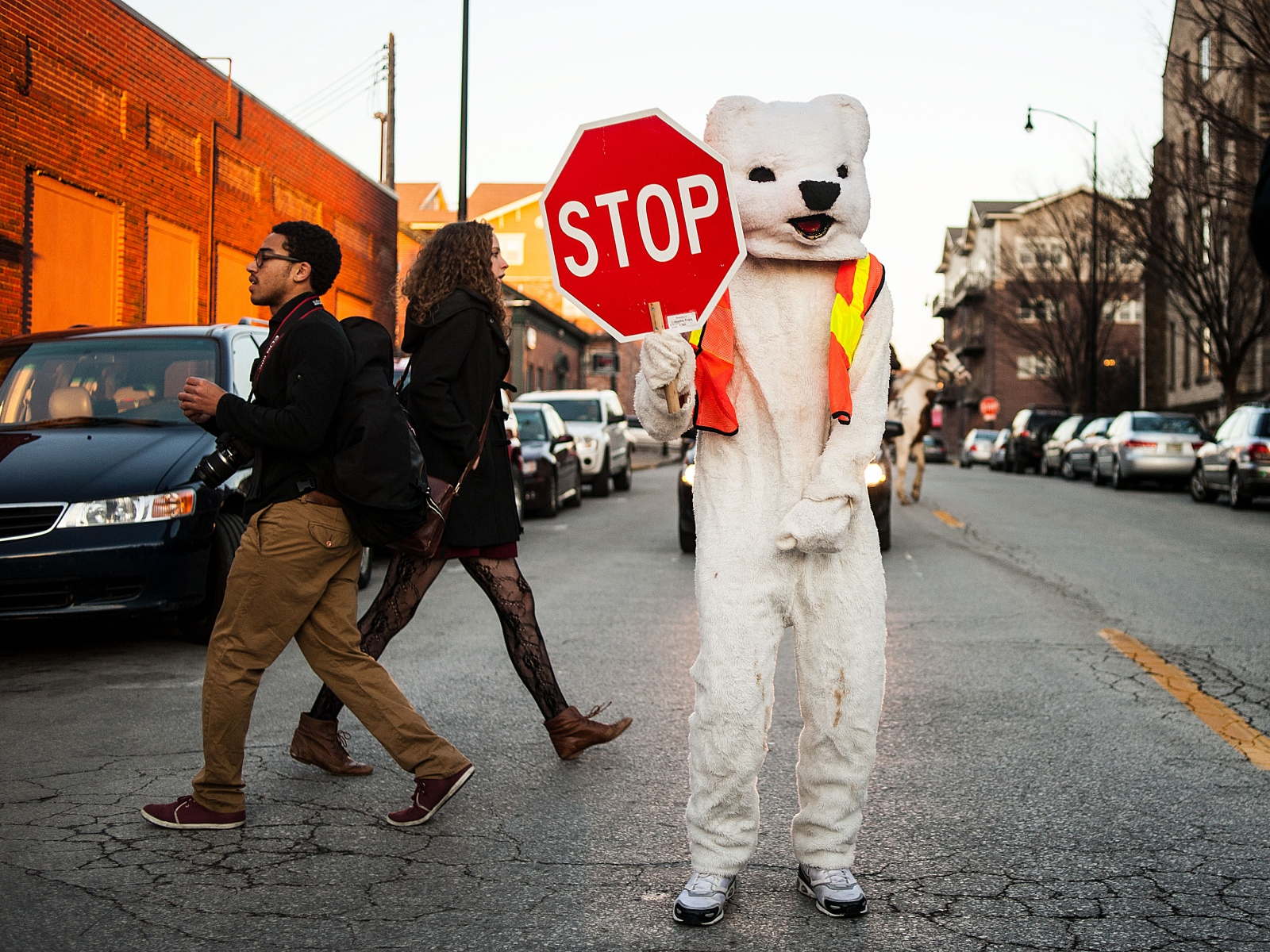 A bear stops traffic to let pedestrians cross along Ninth Street in Columbia, Mo., during the annual True/False documentary film festival.