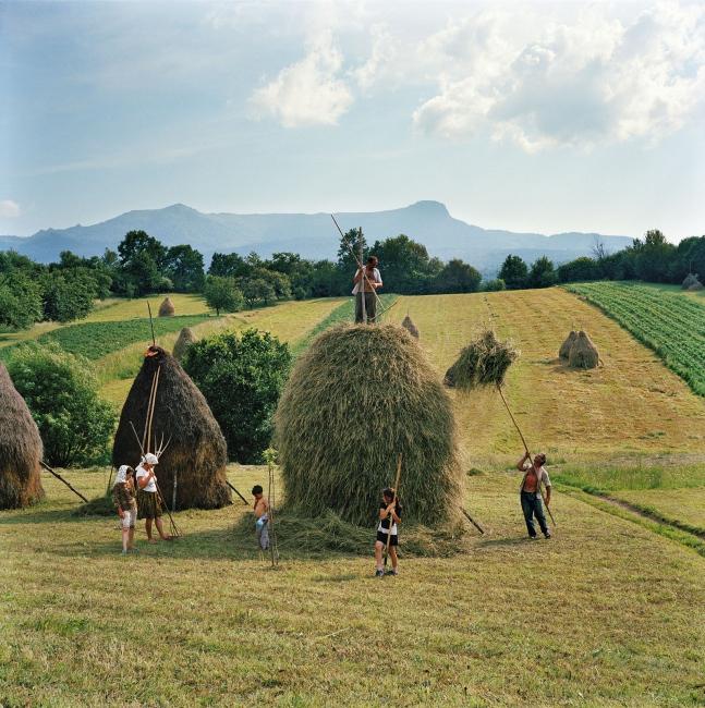 Photography image - Loading Effendi_Transylvania_001.jpg
