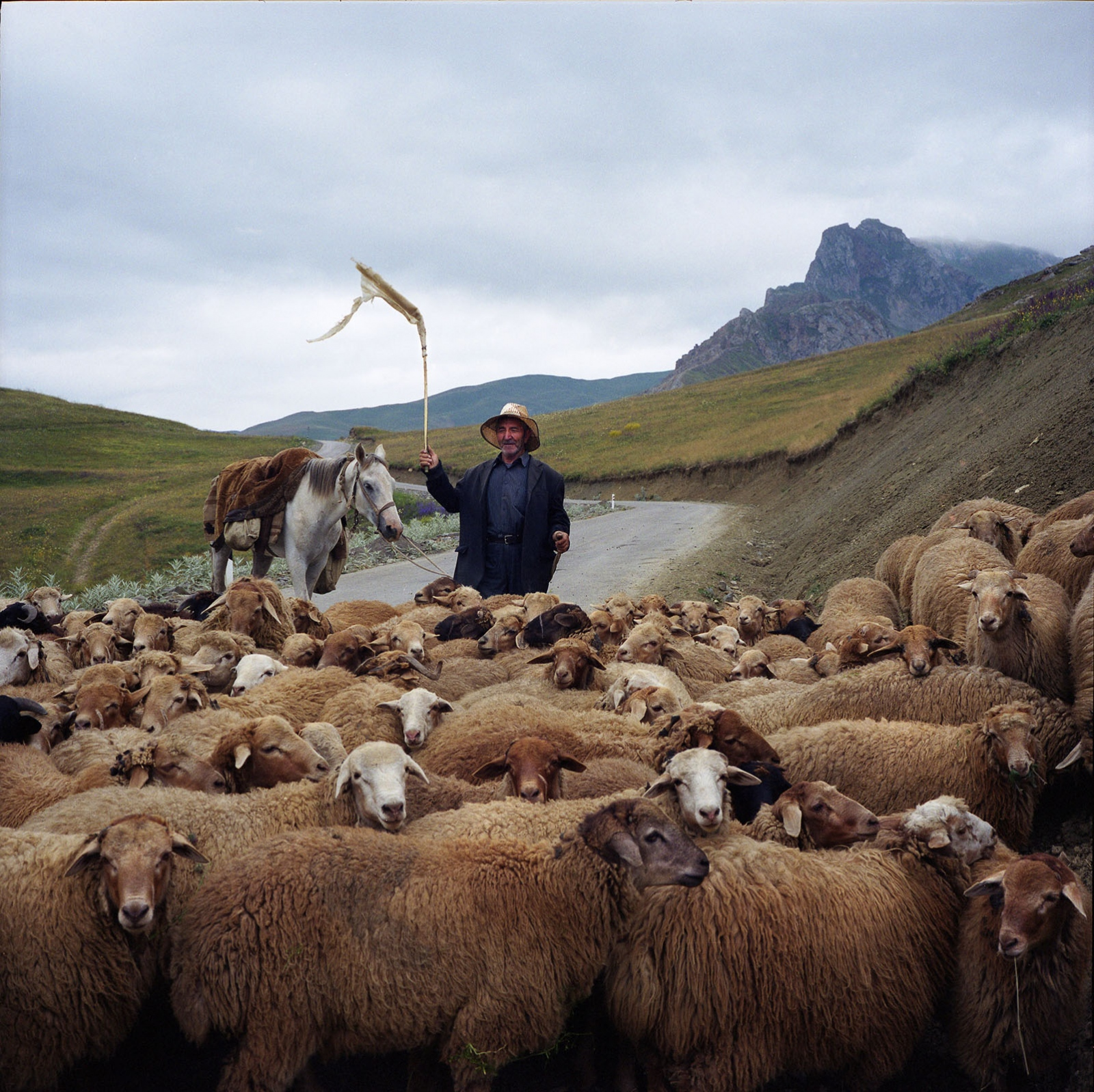 Shepherd on the way to the village. Khinaliq, Azerbaijan. 2009