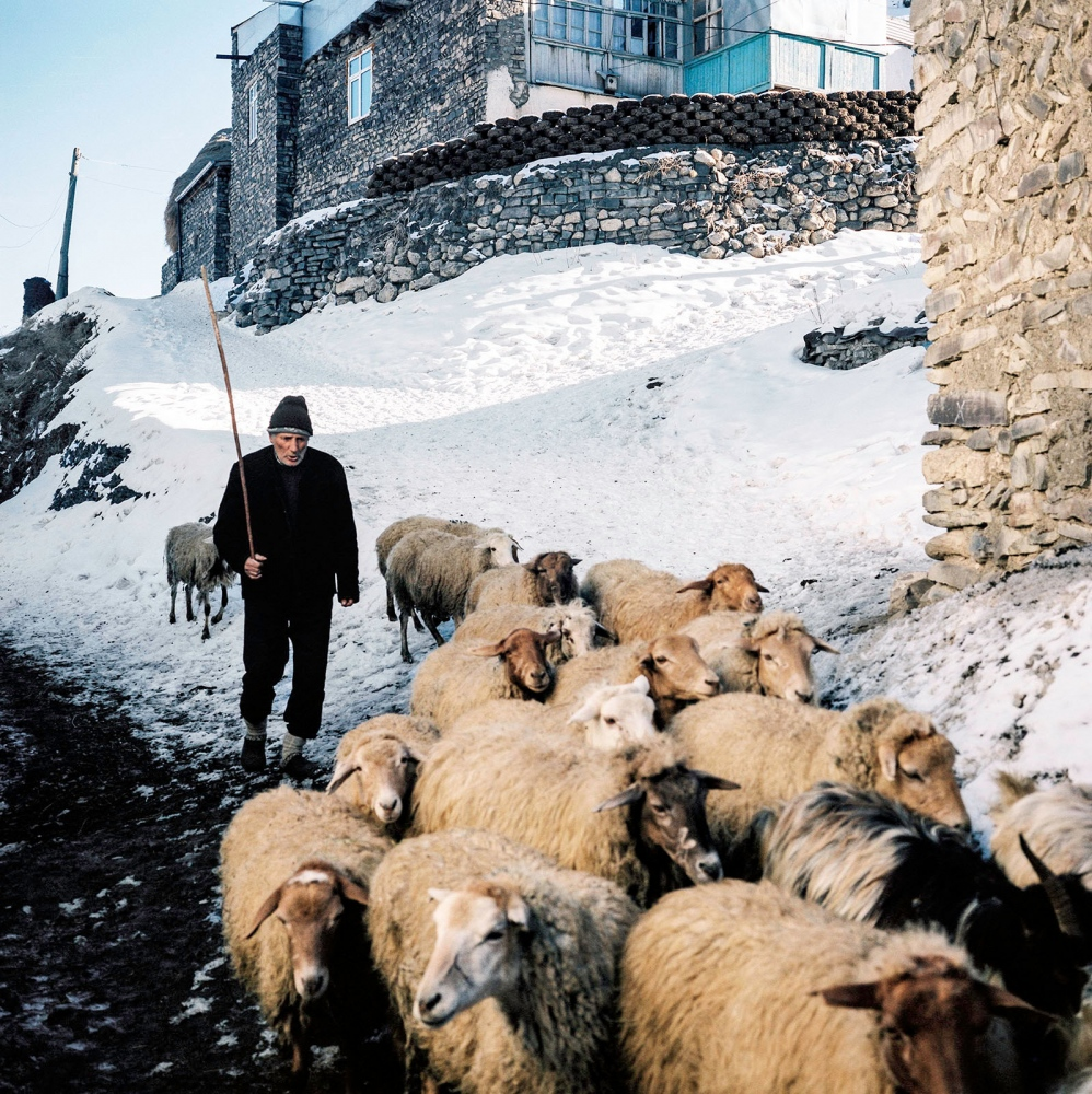 Elderly shepherd taking his flock back home in Khinaliq. Every family in Khinaliq keeps livestock. Khinaliq, Azerbaijan. 2018