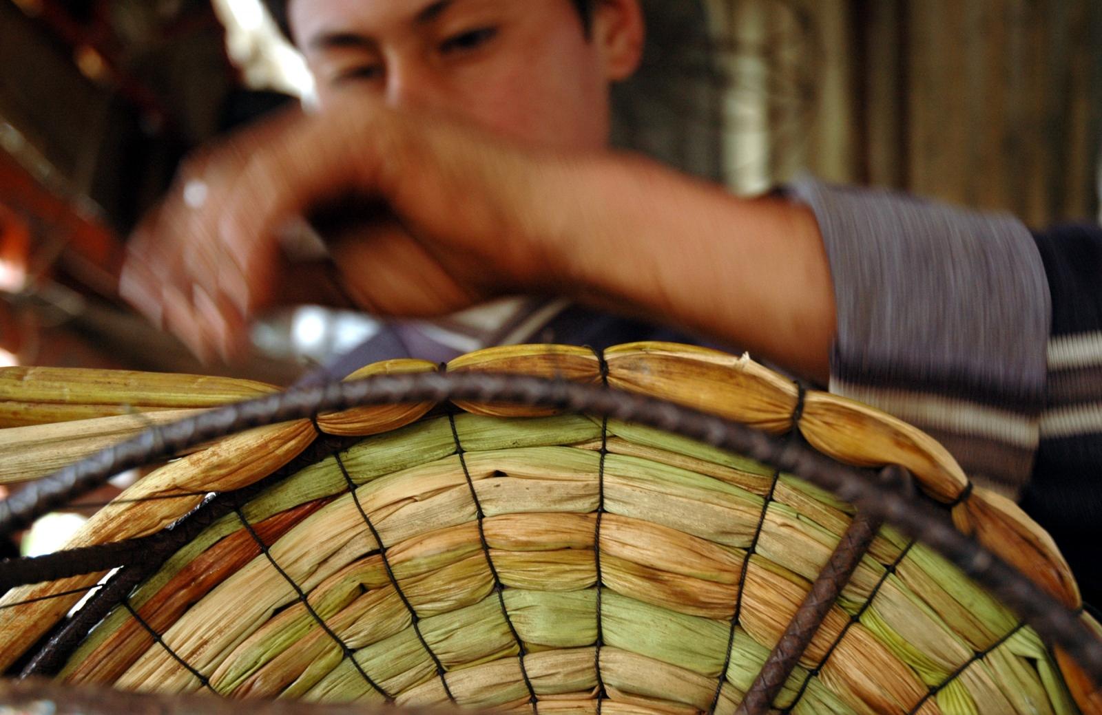 Art and Documentary Photography - Loading JOANATORO_agriculture_and_envioroment044.JPG