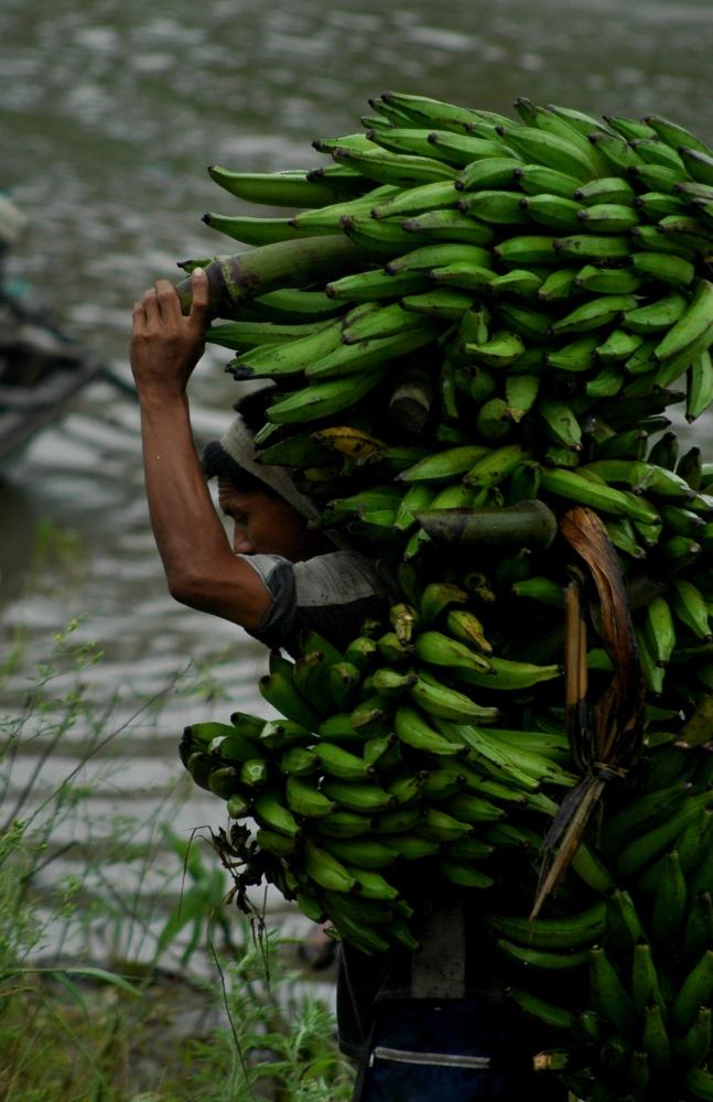 Art and Documentary Photography - Loading Amazon_River018.JPG