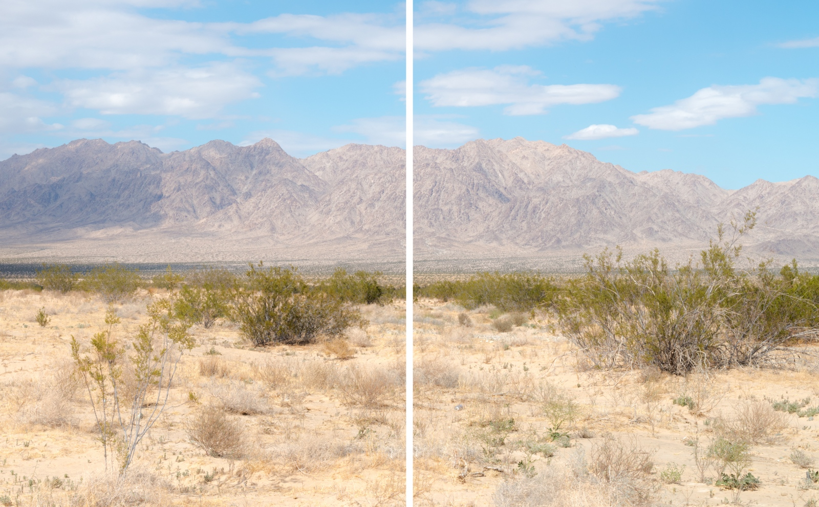 Art and Documentary Photography - Loading 2xcreosotelandscape.jpg