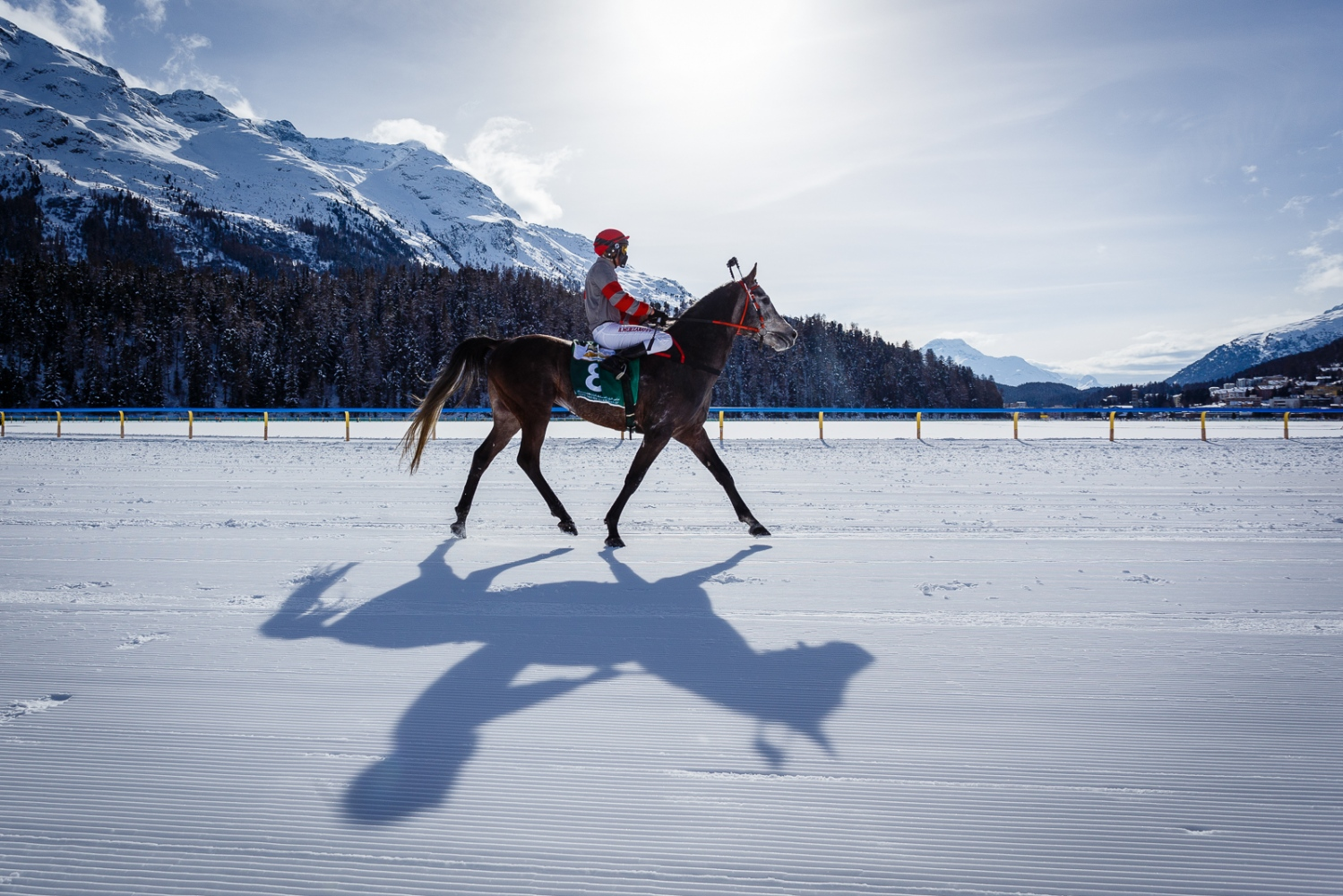 White Turf Races 2017 The White Turf Races 2017 in Sankt Moritz
