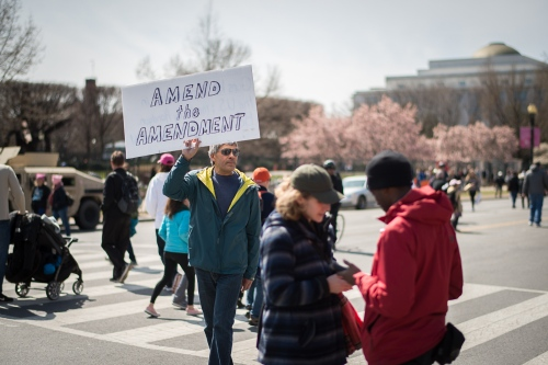 Signs :: March For Our Lives, Washington DC, 2018 - Photography project by Frank Rogozienski