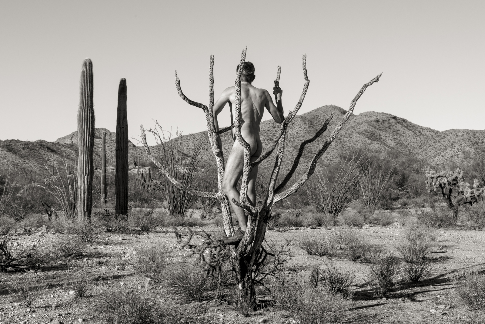 Art and Documentary Photography - Loading _DSC8710-Edit-2-3.jpg