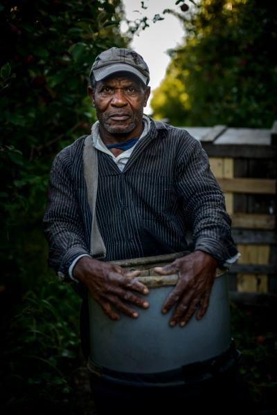 Alfred Johnson of St. Mary, Jamaica is an apple picker at Sunrise Orchards, Cornwall, Vermont.