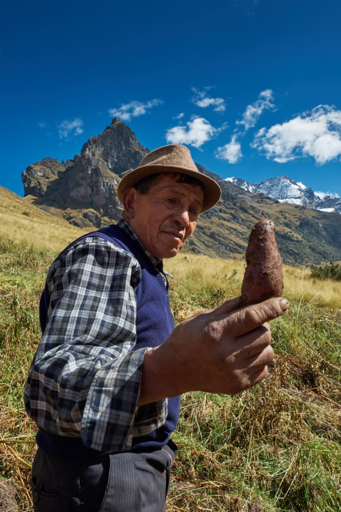 A potato farmer shows off his product with the Urubamba Mountains in the background. Huamanachocque, Peru.