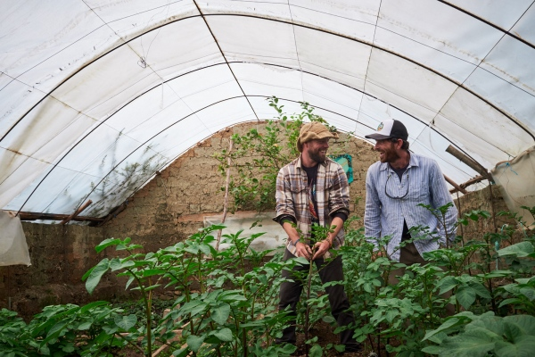 Aaron Ebner (L) and Adam Stieglitz share a laugh while inspecting plants inside a greenhouse they helped a school to build in Chocquecancha, Lares, Peru.