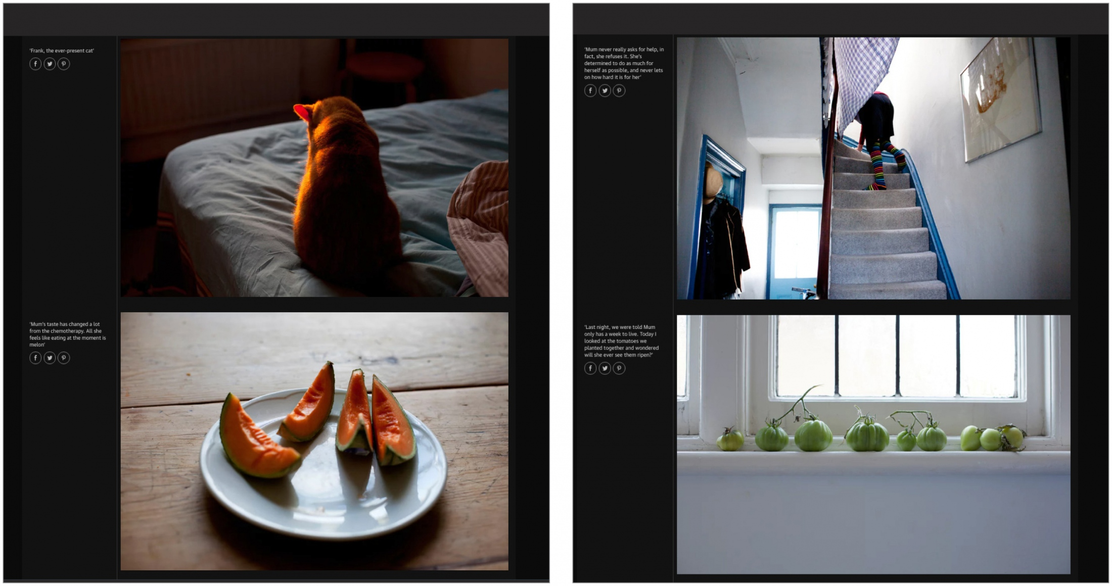 Art and Documentary Photography - Loading TheGuar2.jpg