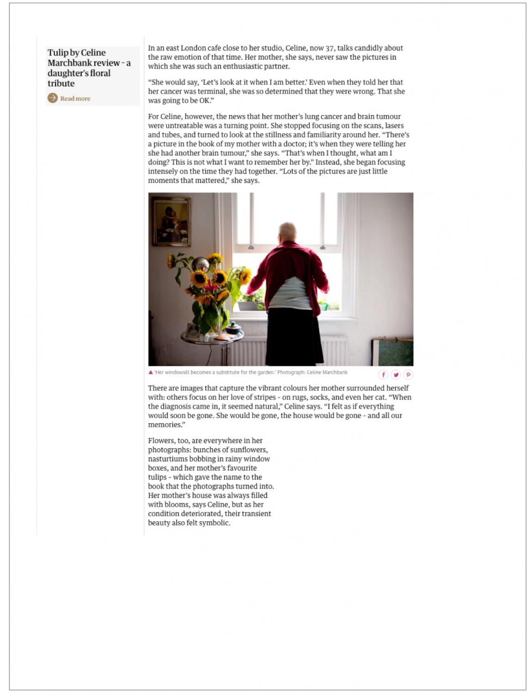 Art and Documentary Photography - Loading Guar2.jpg