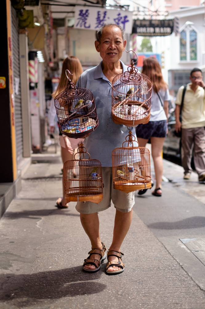 Man with pet birds, Mong Kok, Kowloon, Hong Kong.