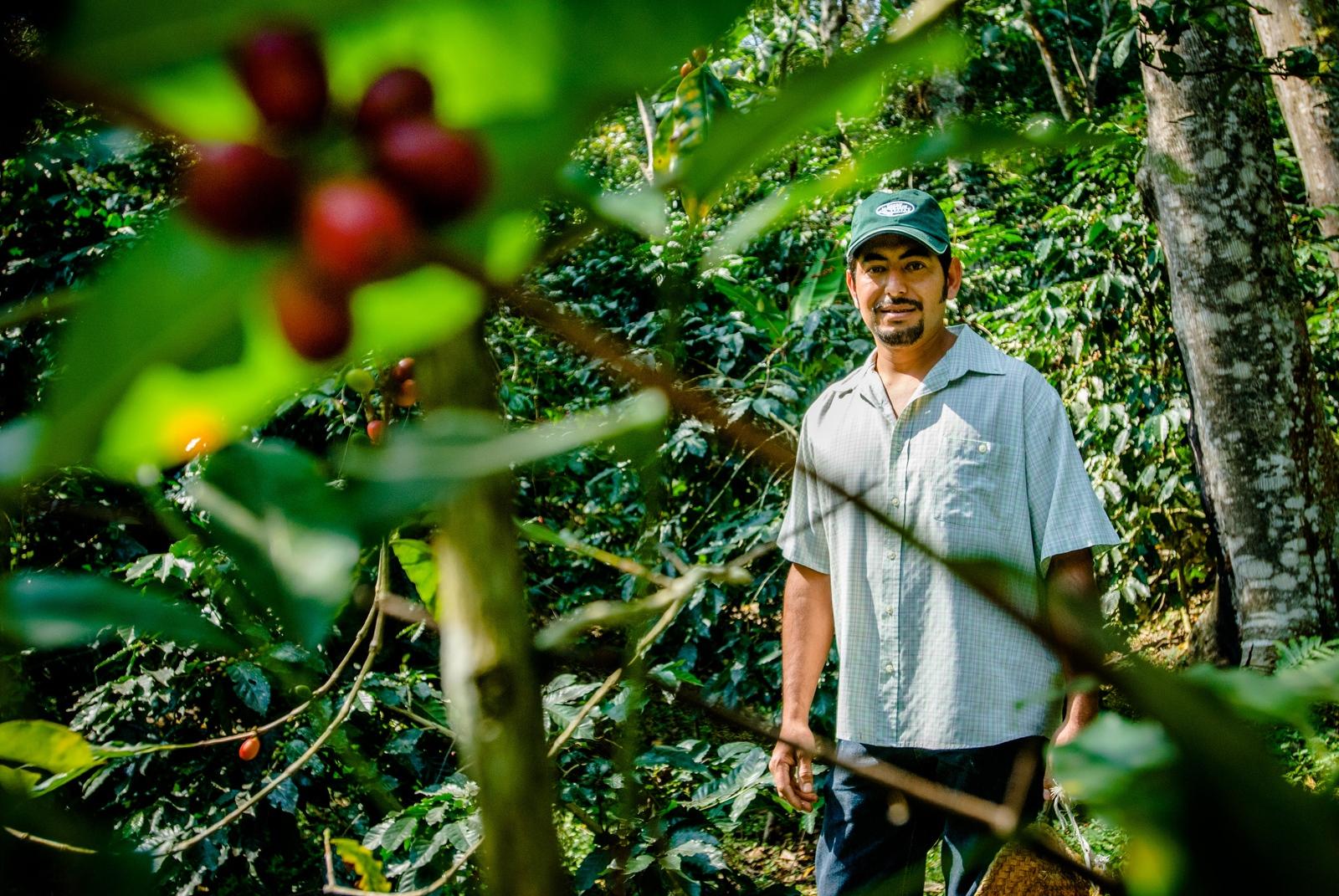 Coffee farmerVictor Garcia, Huatusco Coffee Co-op, Veracruz, Mexico.