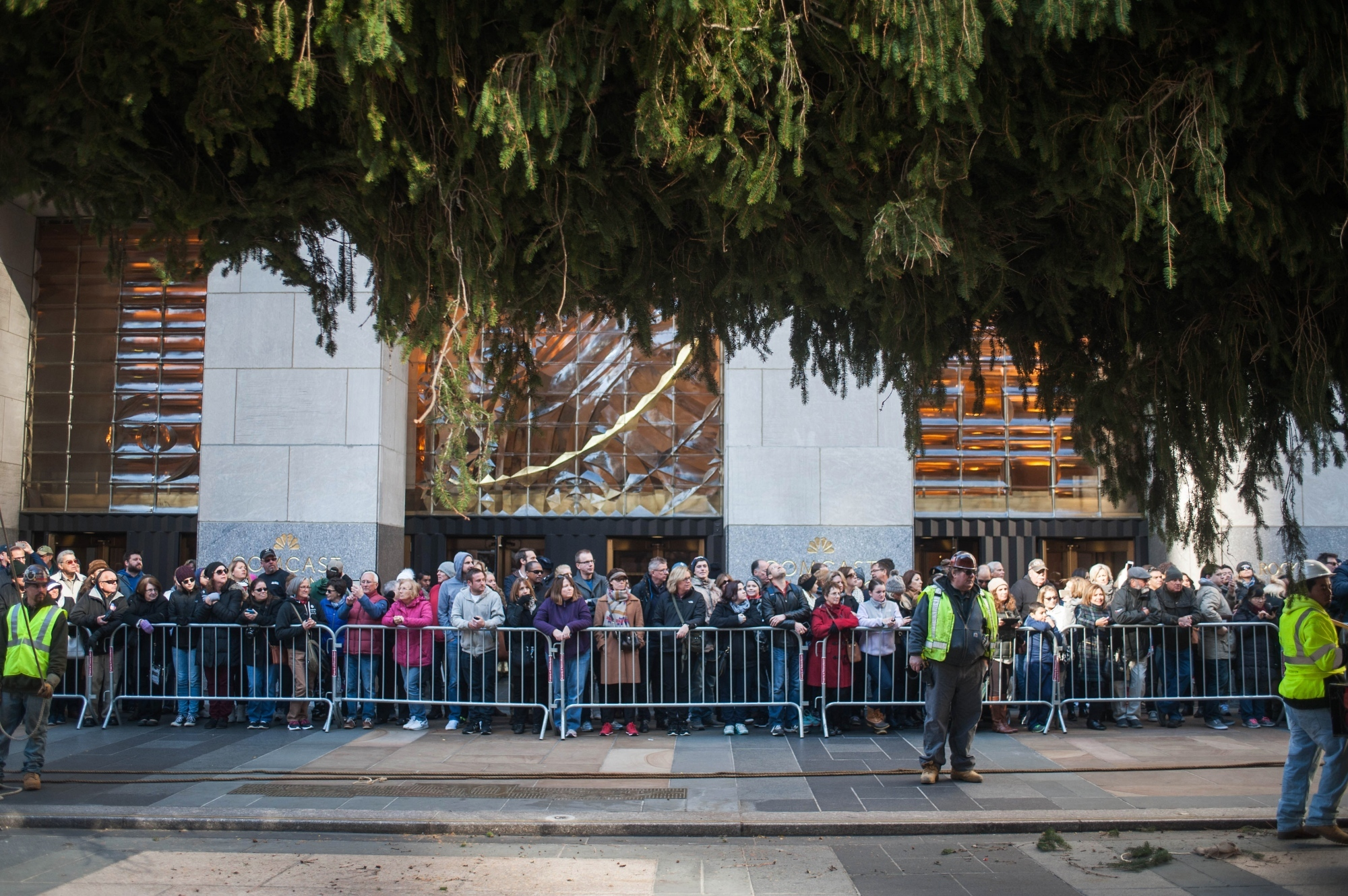 Spectators gather in front of Rockefeller Center entrance to view the tree up close. Security guards are on extra duty to ensure no one is injured by flyaway tree parts.