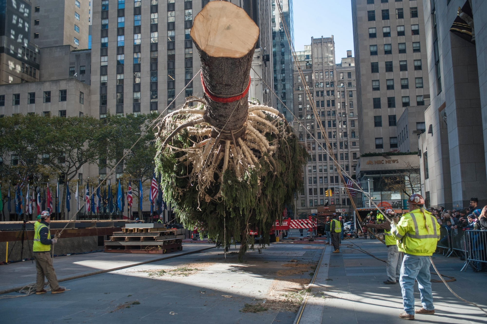 The tree is suspended mid-air while the truck is driven out of Rockefeller Plaza.