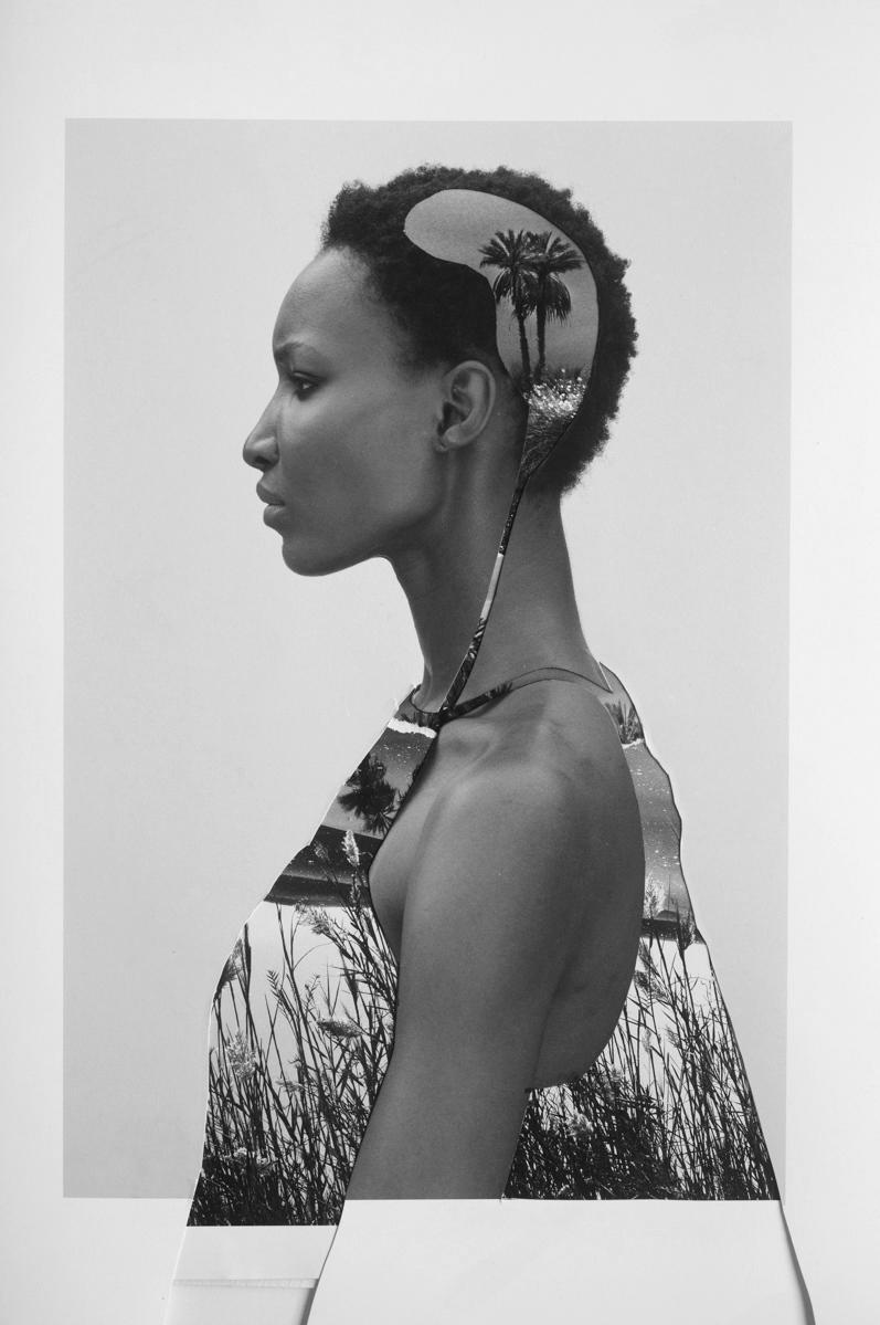 Art and Documentary Photography - Loading Blackorchidee_(6_of_12).jpg