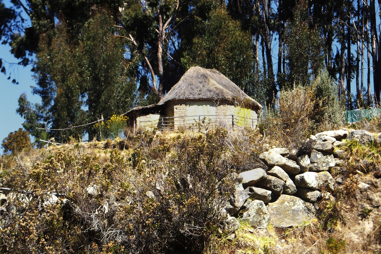 Esta casita la han hecho hace poco para hacer meditación, pero el lugar es donde yo nací.