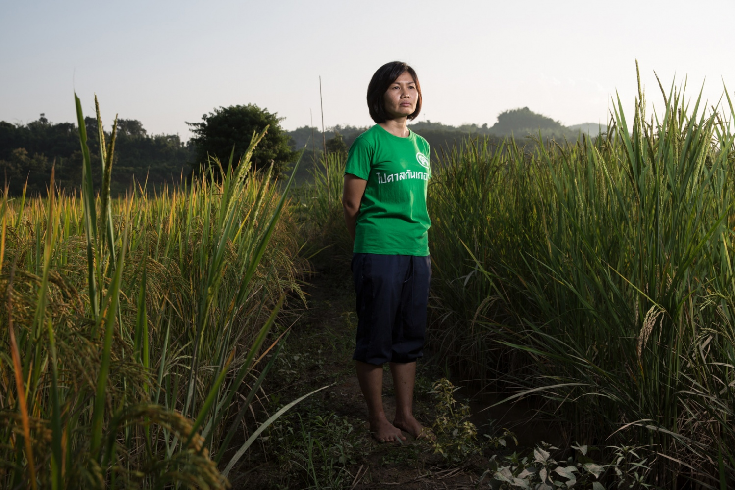 Phattraporn Kaengjumpa, a member of the Khon Rak Ban Kerd Environmental Group stands in a rice paddy in the village of Na Nong Bong in Loei Province. The mountains behind her are the location of a gold mine that the villagers allege continues to contaminate their water supply and affect their crops.