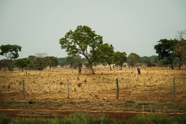 Farm workers spray fields off the side of the Br-163 in Mato Grosso state, Brazil.
