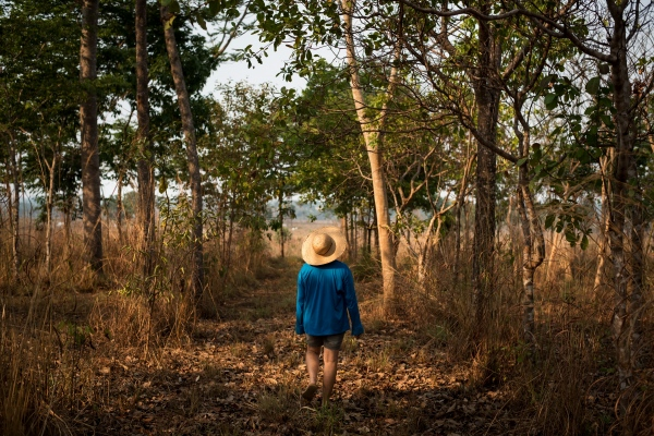 Rosineide Savi Garcia, 40, runs a reforestation project on 8 hectares inside her property in Novo Horizonte, Nova Guarita. She has been replanting trees for 17 years, more than 10,000 of them, she says.