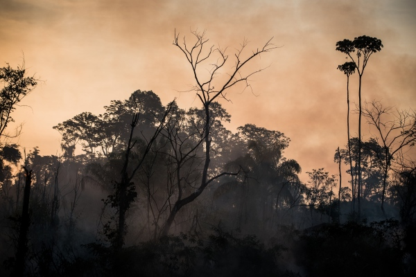 A fire lit by a rancher burns on the side of the BR-163 highway north of Novo Progresso, Para, Brazil.