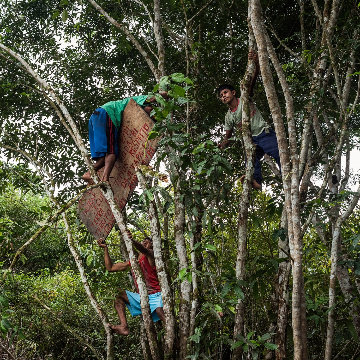 December 08, 2014.  Munduruku warriors hang a sign notifying outsiders to respect their territory while self demarcating their land on the Tapajos River. After years of fighting, the Munduruku were successful in lobbying the government to offically recognize their traiditonal territory with a demarcation. This recognition forced IBAMA, Brazil's Environmental Agency, to suspend the environmental licensing process for the 12,000 megawatt Tapajós hydroelectric complex, due to the unconstitutional flooding of their now recognized land. But the fight continues as 40 more dams are still planned for the river basin.