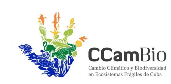 CCambio Campaing